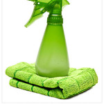 Eco Friendly Cleaning Products and Alternatives