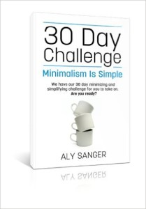 aly challenge book