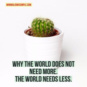 world needs less minimalism is simple